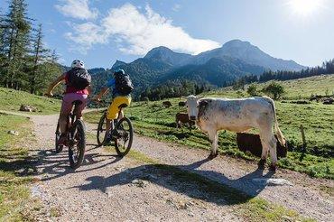 E-Biken im Salzkammergut, © Salzkammergut/Katrin Kerschbaumer